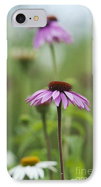 Echinacea Purpurea Magnus  IPhone Case by Tim Gainey