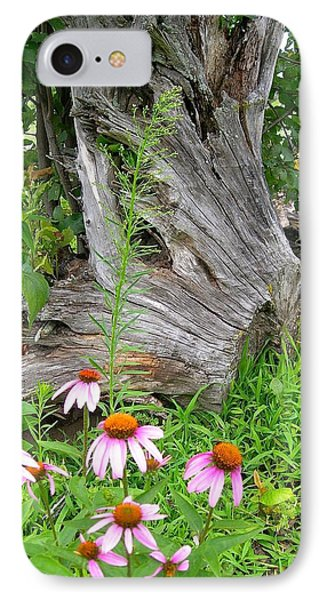Echinacea Stumpage IPhone Case by Randy Rosenberger