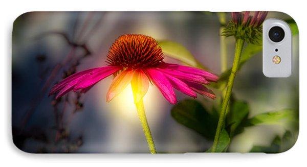 Echinacea Sunrise IPhone Case