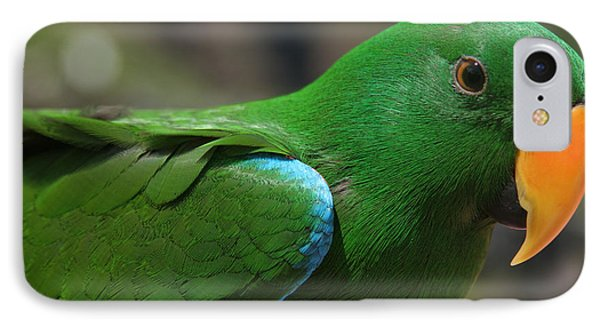 Eclectus Roratus Phone Case by Sharon Mau