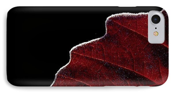 Edge Of Autumn IPhone Case by Steven Milner