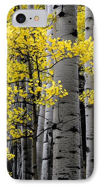 Edge Of Night IPhone Case by The Forests Edge Photography - Diane Sandoval