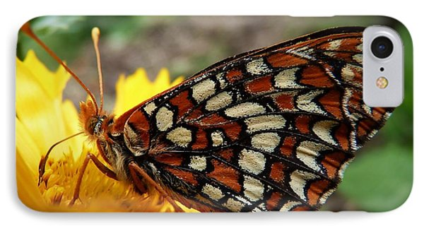 IPhone Case featuring the photograph Edith Checkerspot by Julia Hassett
