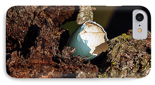 Eggs Of Nature 1 IPhone Case by David Lester