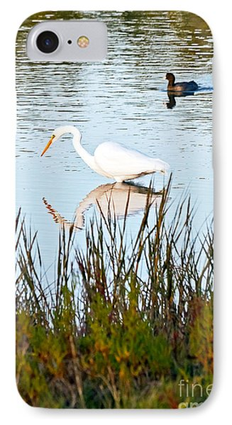 IPhone Case featuring the photograph Egret And Coot In Autumn by Kate Brown