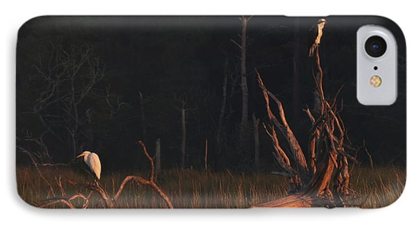 IPhone Case featuring the photograph Egret And Osprey Sunrise by Deborah Smith