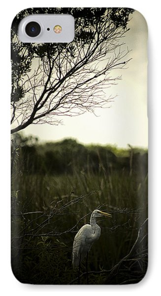 Egret At Sunset IPhone Case by Bradley R Youngberg