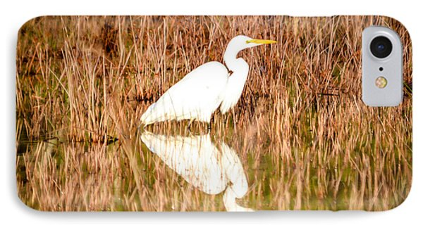 Egret Basking In The Morning Sun IPhone Case