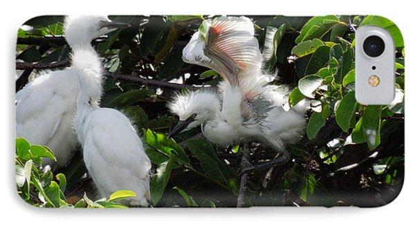 Egret Chicks IPhone Case by Ron Davidson