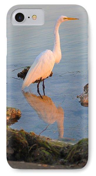 Egret - Dunedin Florida Phone Case by Bill Cannon