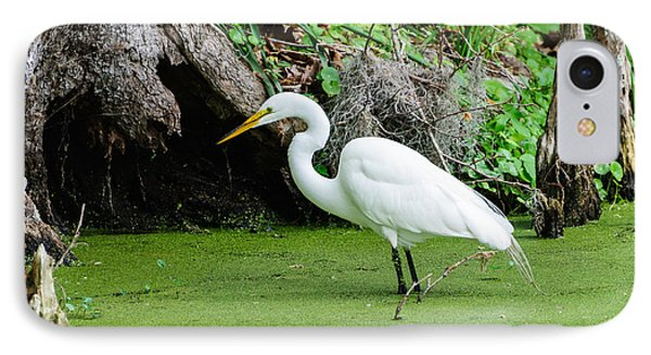 Egret Fishing IPhone Case