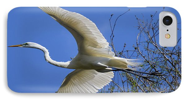 Egret Flying IPhone Case by Judith Morris