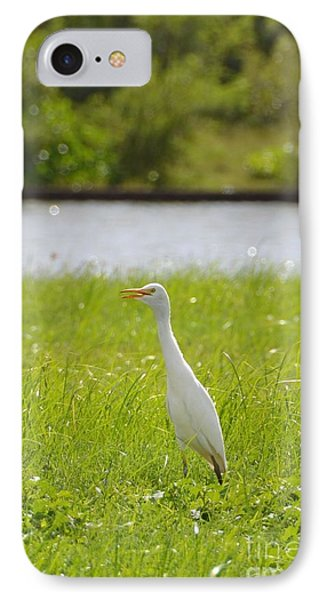 IPhone Case featuring the photograph Egret On The Green-no2 by Darla Wood