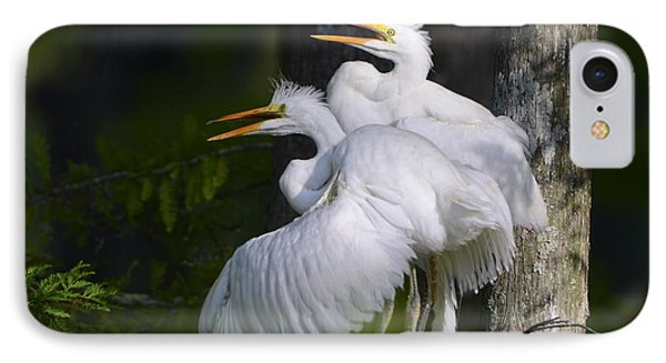 Egret Nestlings In A Cypress Swamp IPhone Case by Bonnie Barry