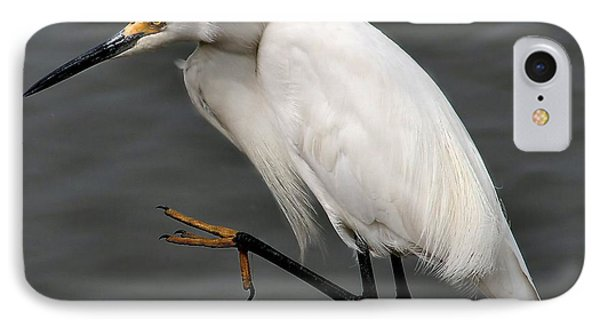 Egret IPhone Case by Roger Becker