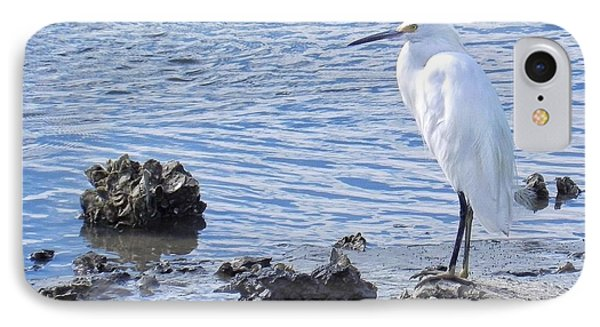 Egret Standing Perfectly Still IPhone Case