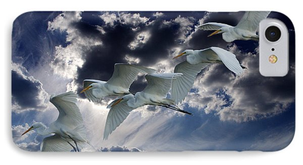 Egrets In Succession Phone Case by Roy Williams