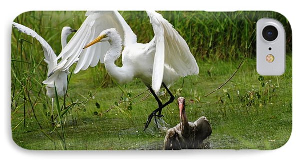 Egrets Taking Flight IPhone Case