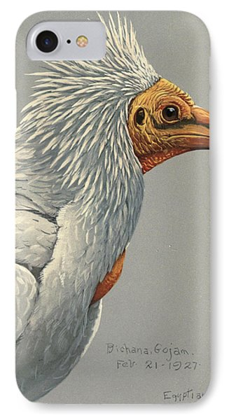 Egyption Vulture IPhone Case by Rob Dreyer