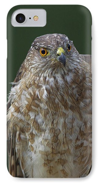 IPhone Case featuring the photograph Eh by Gerry Sibell