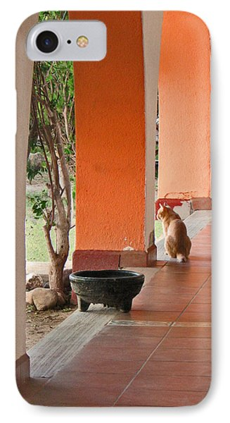 IPhone Case featuring the photograph El Gato by Marcia Socolik