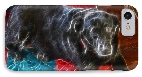 Electrostatic Dog And Blanket Phone Case by Barbara Griffin