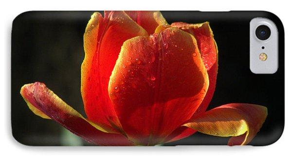 Elegance Of Spring Phone Case by Karen Wiles