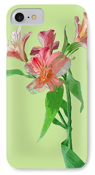 Elegance On Green IPhone Case by Karen Nicholson