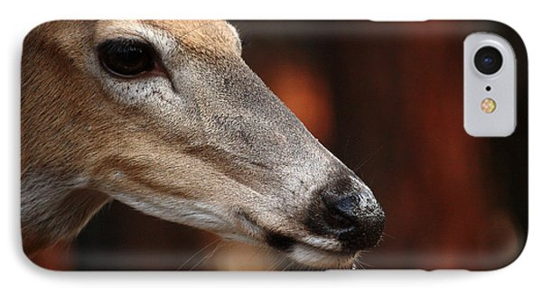 IPhone Case featuring the photograph Elegance by Rita Kay Adams