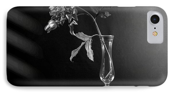 Elegant Respect  IPhone Case by Mark Ashkenazi