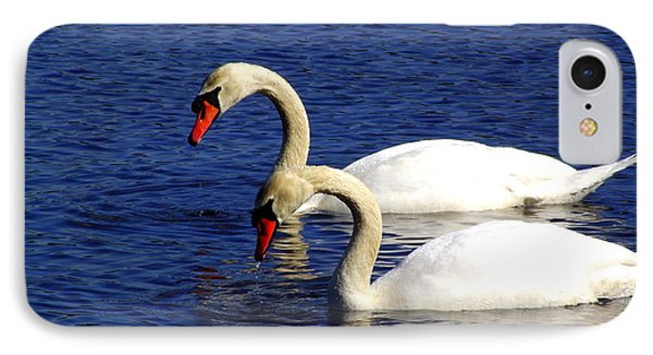 Elegant Swan Pair  IPhone Case by CapeScapes Fine Art Photography