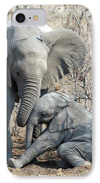 Elephant Affection IPhone Case by Tony Camacho