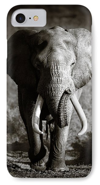 Elephant Bull IPhone Case by Johan Swanepoel