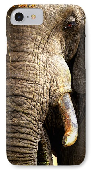 Elephant Close-up Portrait IPhone Case by Johan Swanepoel