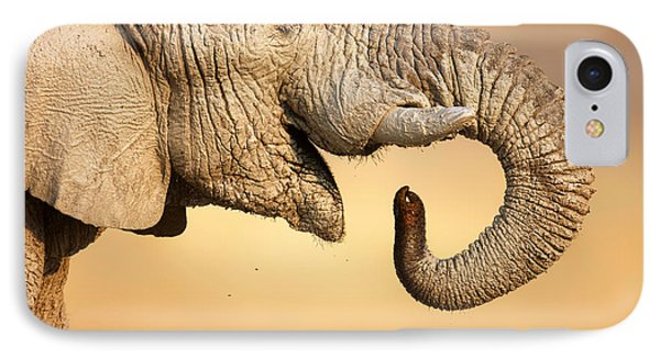 Elephant Drinking IPhone Case by Johan Swanepoel