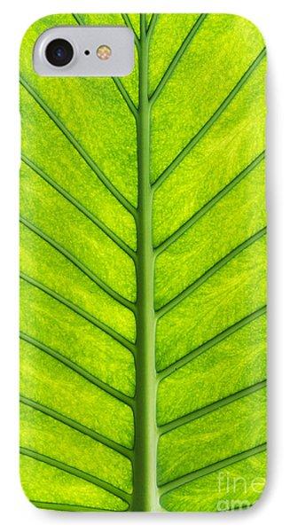 Elephant Ear Taro Leaf Pattern Phone Case by Tim Gainey