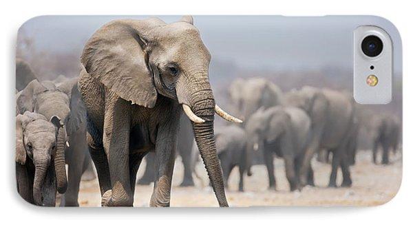 Elephant Feet IPhone Case by Johan Swanepoel