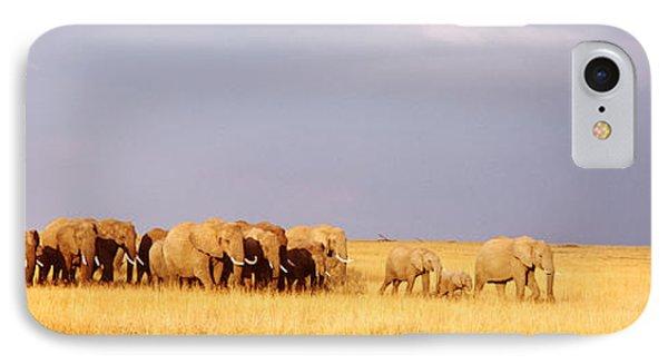 Elephant Herd, Maasai Mara Kenya IPhone Case by Panoramic Images