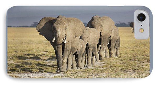 Elephant Herd  IPhone Case