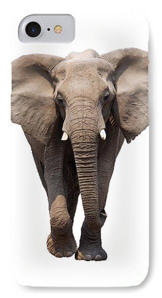 Elephant Isolated Phone Case by Johan Swanepoel