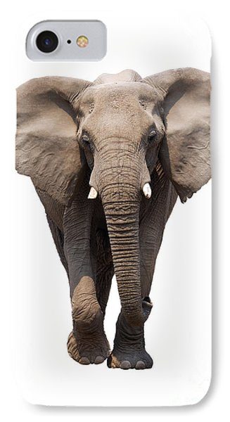 Elephant Isolated IPhone Case