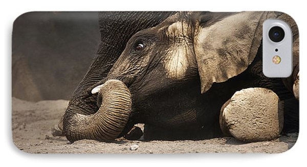 Elephant - Lying Down IPhone Case