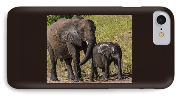 Elephant Mom And Baby IPhone Case