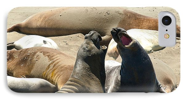 Elephant Seal Birthing Grounds Two Elephant Seal Bulls Fighting Phone Case by Artist and Photographer Laura Wrede