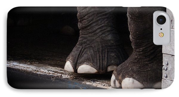 Elephant Toes IPhone Case by Bob Orsillo