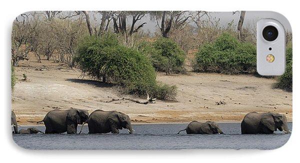 Elephants Crossing Chobe River, Chobe IPhone Case