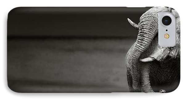 Elephants Interacting IPhone Case by Johan Swanepoel