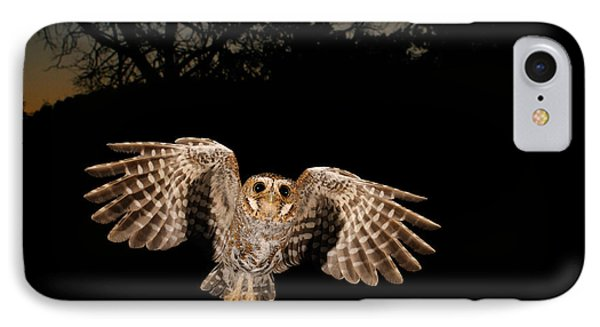 Elf Owl IPhone Case by Scott Linstead