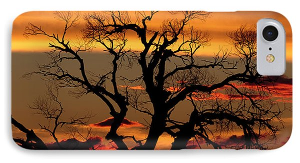 IPhone Case featuring the photograph Elgin Sunset by Beverly Parks