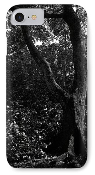IPhone Case featuring the photograph Elizabethan Gardens Tree In B And W by Greg Reed